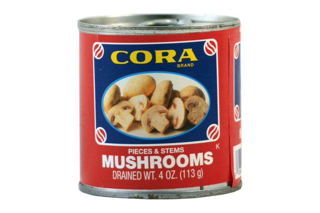 Mushrooms sp